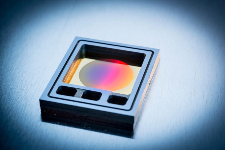 Quantum light and matter